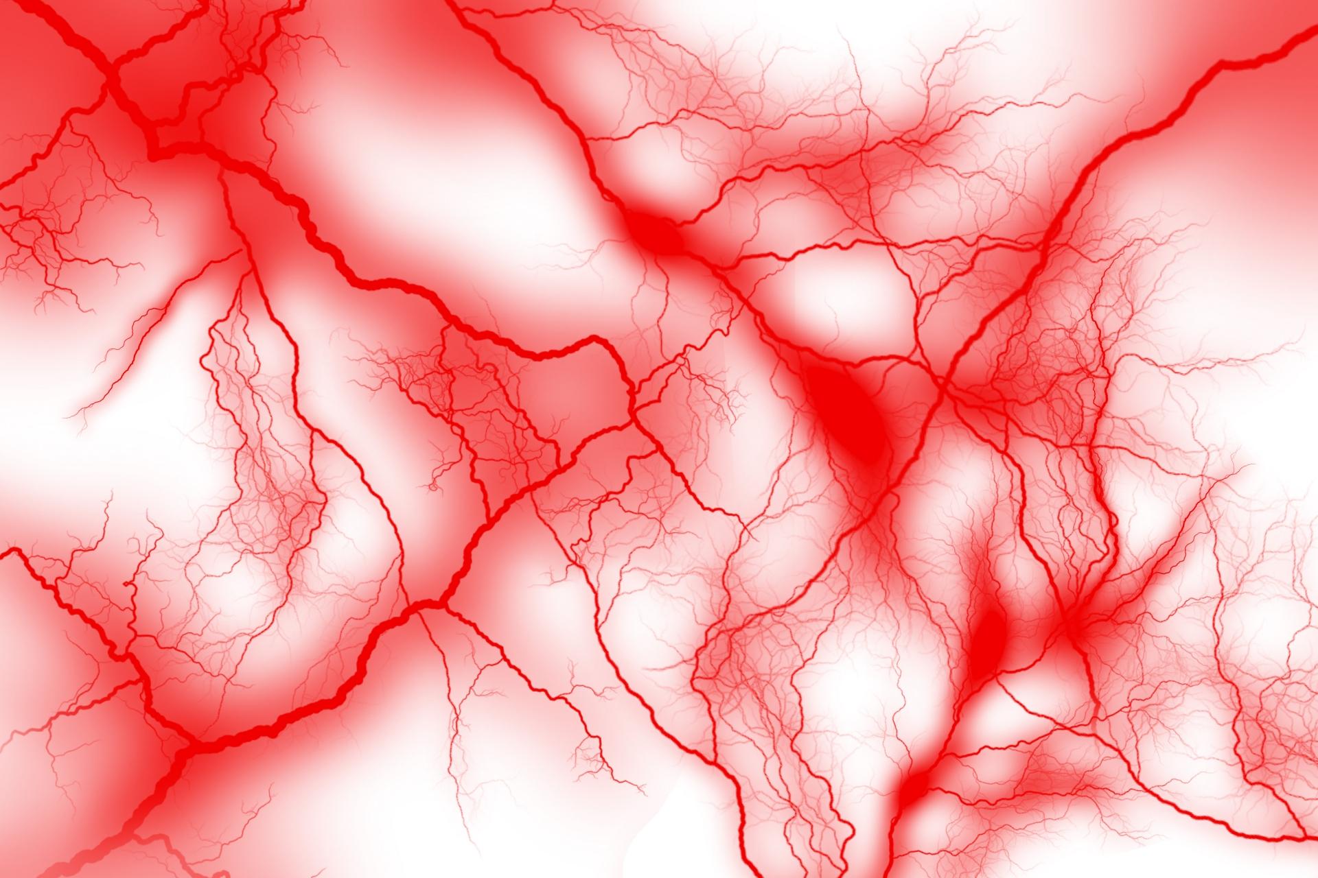 老後を健康に過ごすために!動脈硬化や脳梗塞の予防につながる油とは?